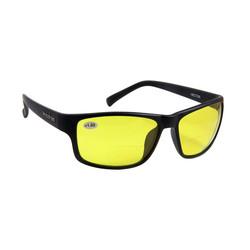 Hector bifocale zonnebril (selecteer kleur)