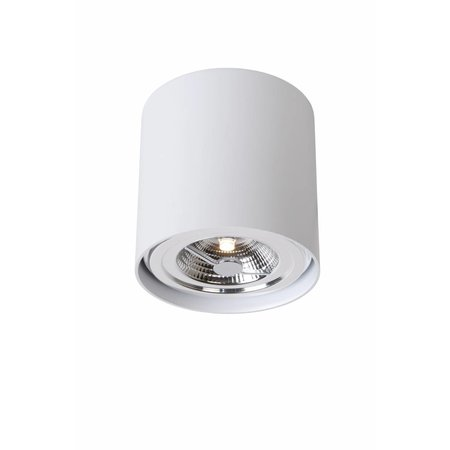 Spot lamp plafond LED wit of grijs rond 12W AR111