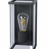 Clear glass wall sconce E27