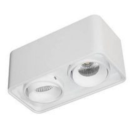 Ceiling light fixture 2x10W LED orientable square 195mm W