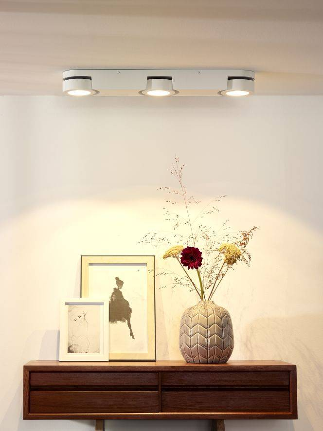 Plafond spot LED wit 3x5W | Myplanetled
