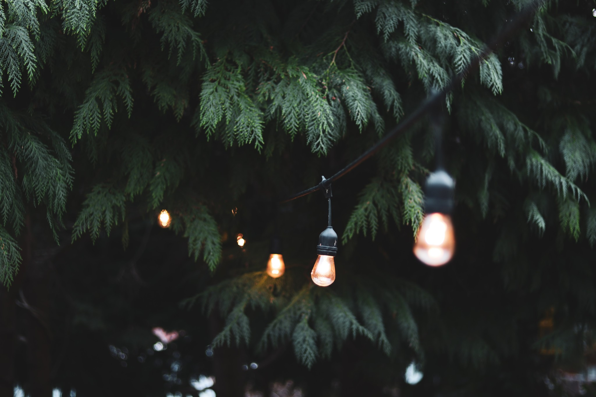 LED tuinverlichting: dezelfde gezellige sfeer als binnen