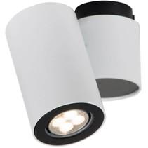 Plafonnier cylindrique blanc, gris orientable GU10x1