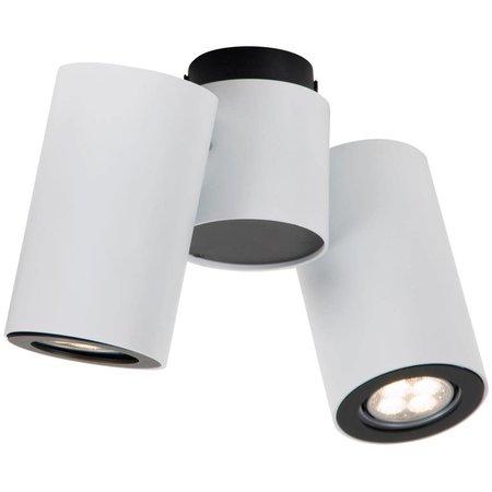 Cylinder ceiling light white or grey orientable GU10x2