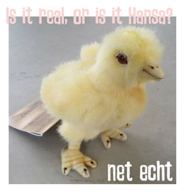 Hansa knuffels Chick Hansa Toy 12 cm