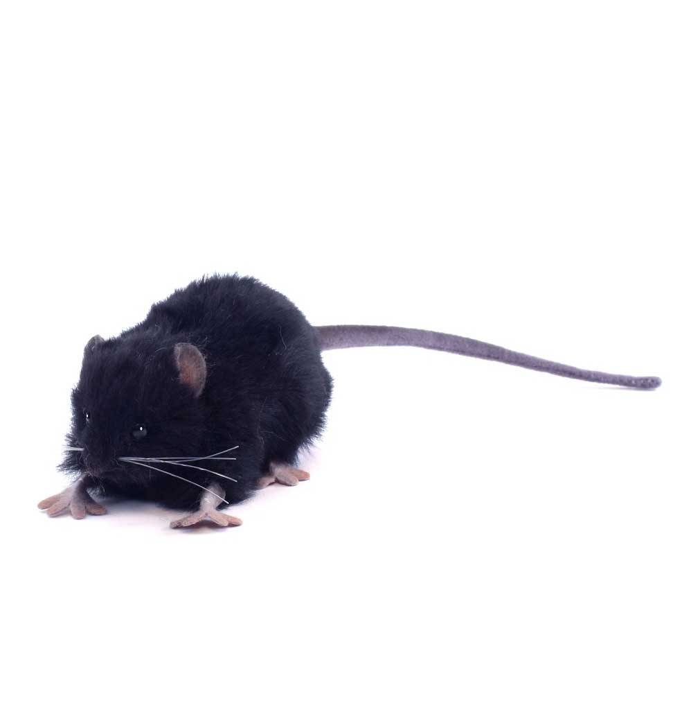 Hansa knuffels Black rat soft toy Hansa 12 cm