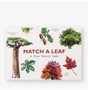 Tony Kirkham, illustrations by Holly Exley Match a Leaf