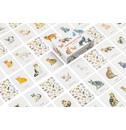 Marcel George Katten & kittens memoryspel