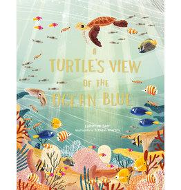 Catherine Barr & Brendan Kearney A Turtle's View of the Ocean Blue