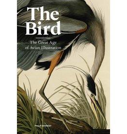 Philip Kennedy The Bird