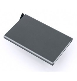 Secrid Secrid Card Protector Titanium pasjeshouder