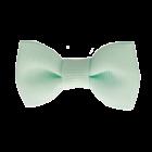 Your Little Miss Baby haarspeldje pastel green