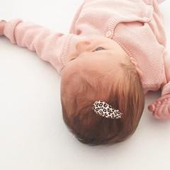 Your Little Miss Baby haarspeldjes met leopard print champagne