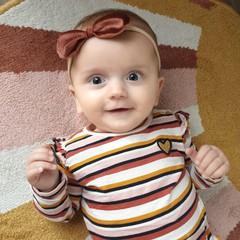 Your Little Miss Baby haarbandje van velvet met strik - brown