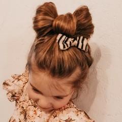 Your Little Miss Haarspeldje zebra madness