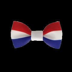 Your Little Miss Baby haarspeldje met strikje - Dutch flag
