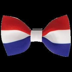 Your Little Miss Haarspeld met strik - Dutch flag