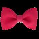 Your Little Miss Haarspeldje virtual pink