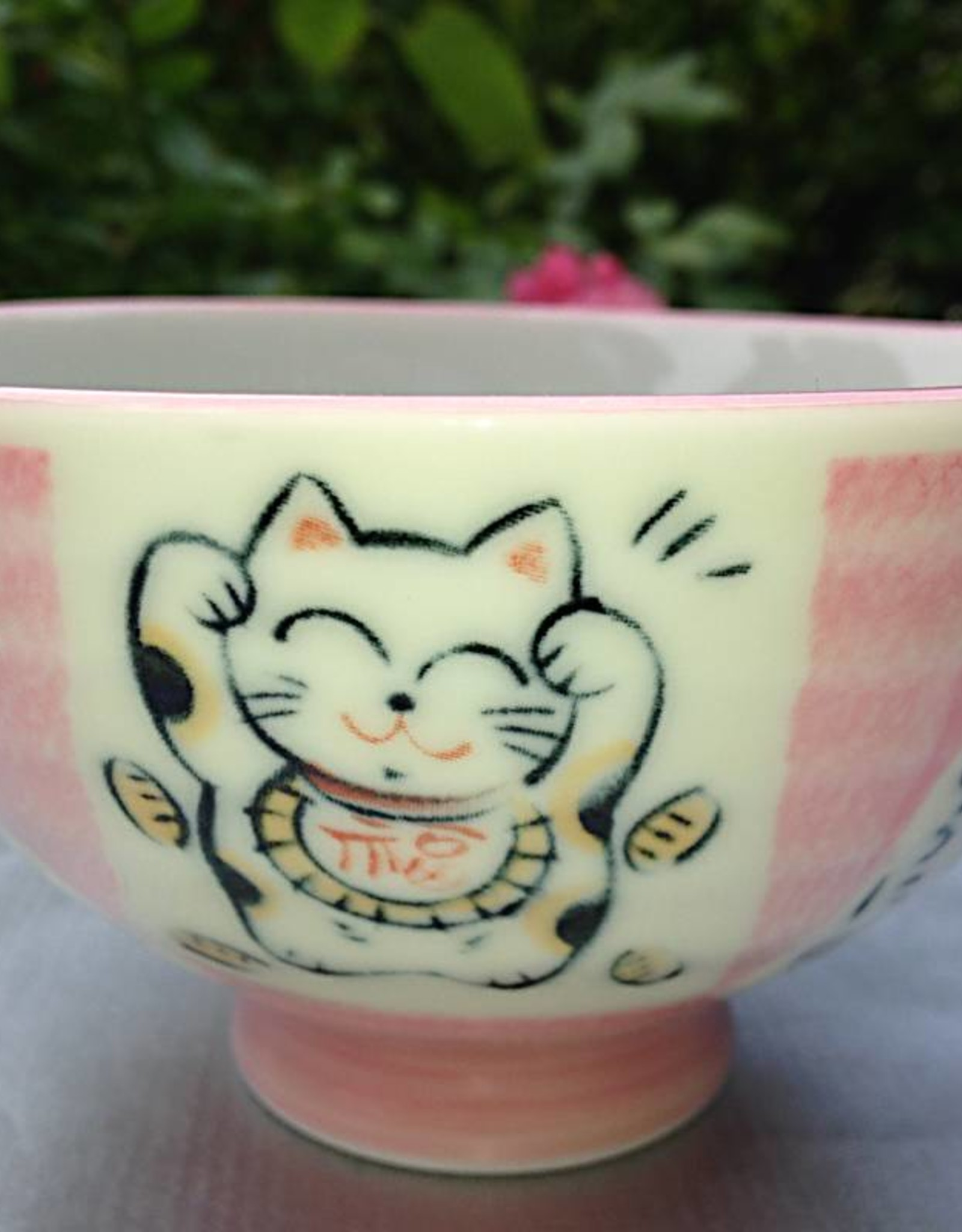 Tokyo Design Studio Japanese bowl cat love pink