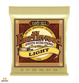 Ernie Ball Ernie Ball 2004 Earthwood Light