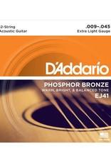 D'Addario D'Addario EJ41 12-String