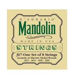 D'Addario D'Addario J67 Mandoline