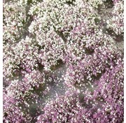 MiniNatur Blossom Tufts Early Fall 1 : 87 - 726-23 S