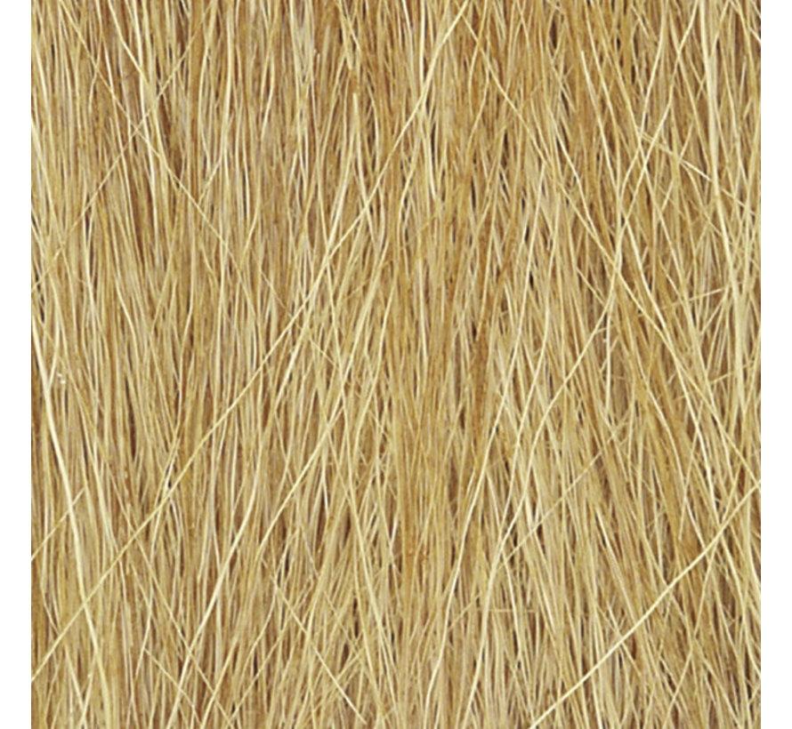 Field Grass Harvest Gold - WLS-FG172