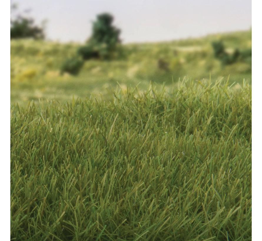Woodland Scenics Static Grass Dark Green 7mm - 42gr - FS621