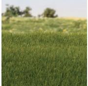 Woodland Scenics Static Grass Dark Green 4mm - 42gr - FS617