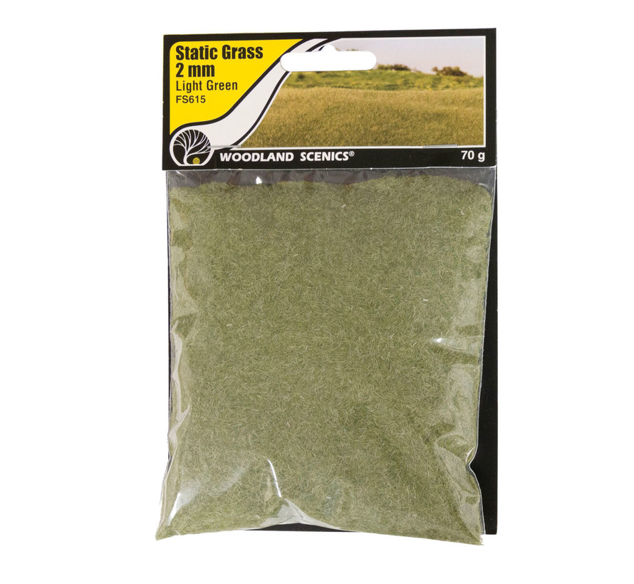 Woodland Scenics Static Grass Light Green 2mm - 70gr - FS615