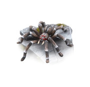 Tabletop-Art Giant Spider - 1x - TTA200252