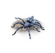 Tabletop-Art Gigantic Spider - 1x - TTA200254