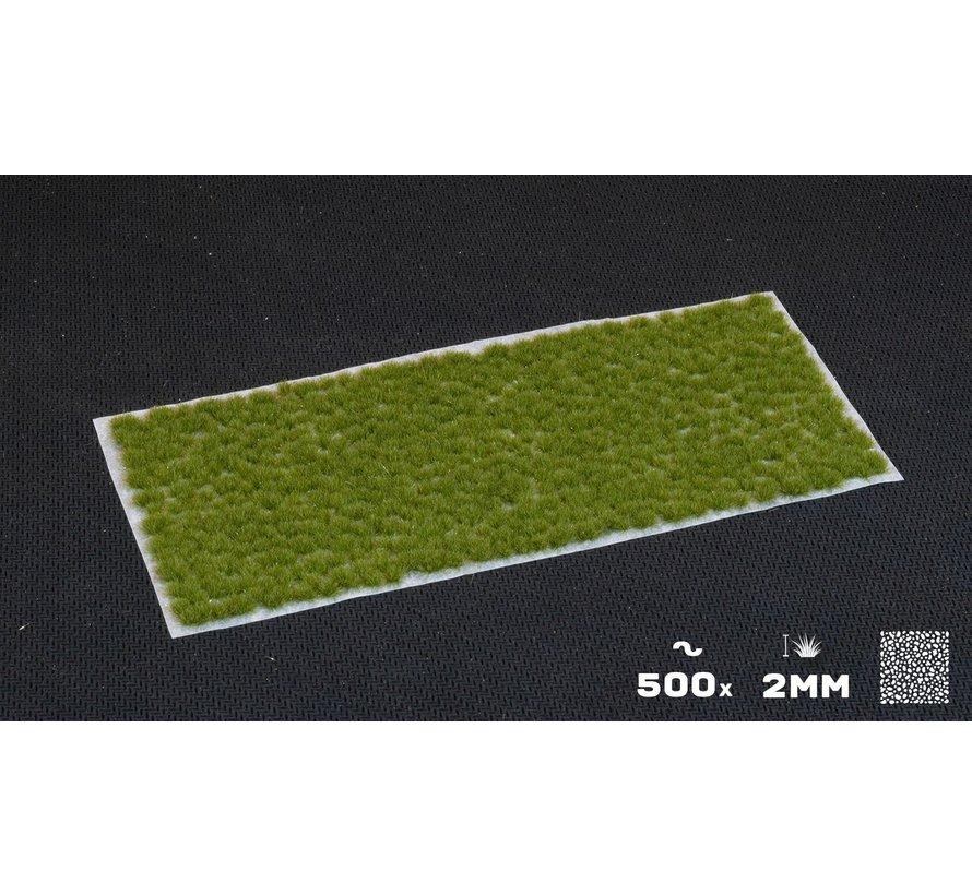 Gamers Grass Tiny Tufts Dry Green 2mm - GGTT-DG