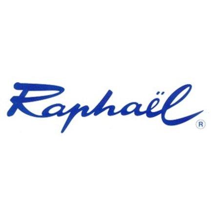 Raphael 8404 Penselen
