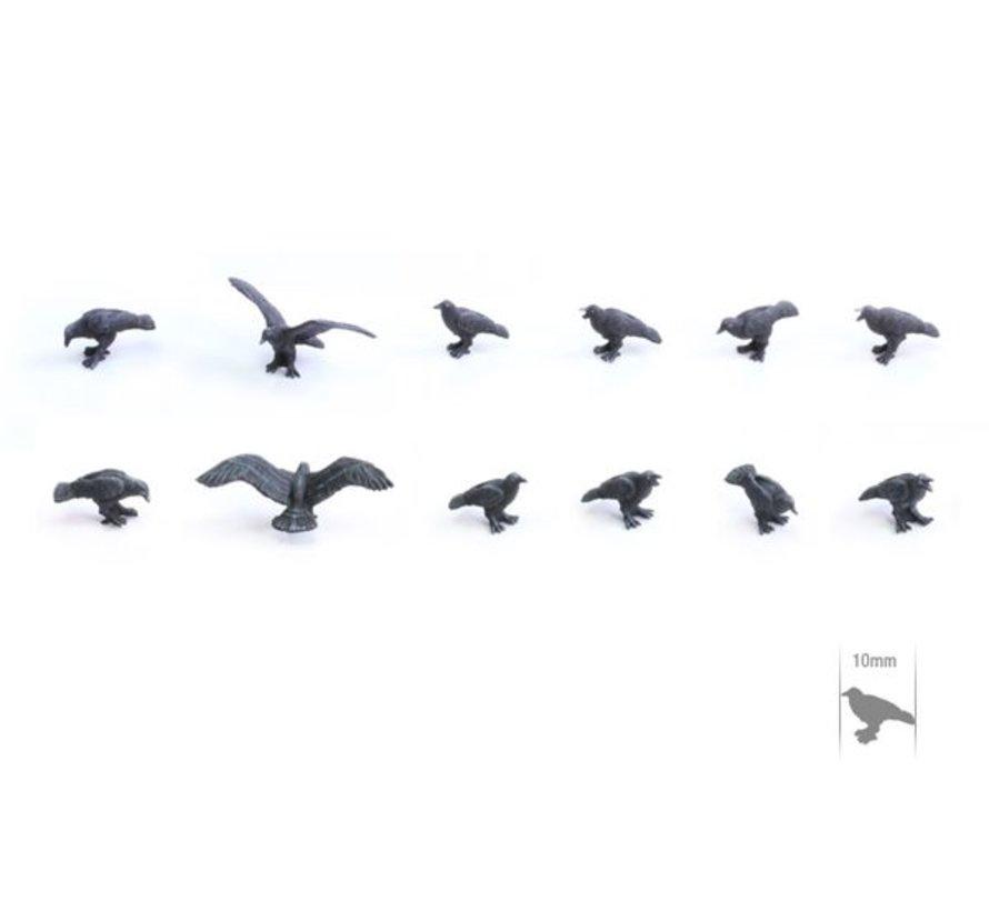 Raven Set - TTA601059