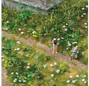 Busch Wilde planten - HO 1227