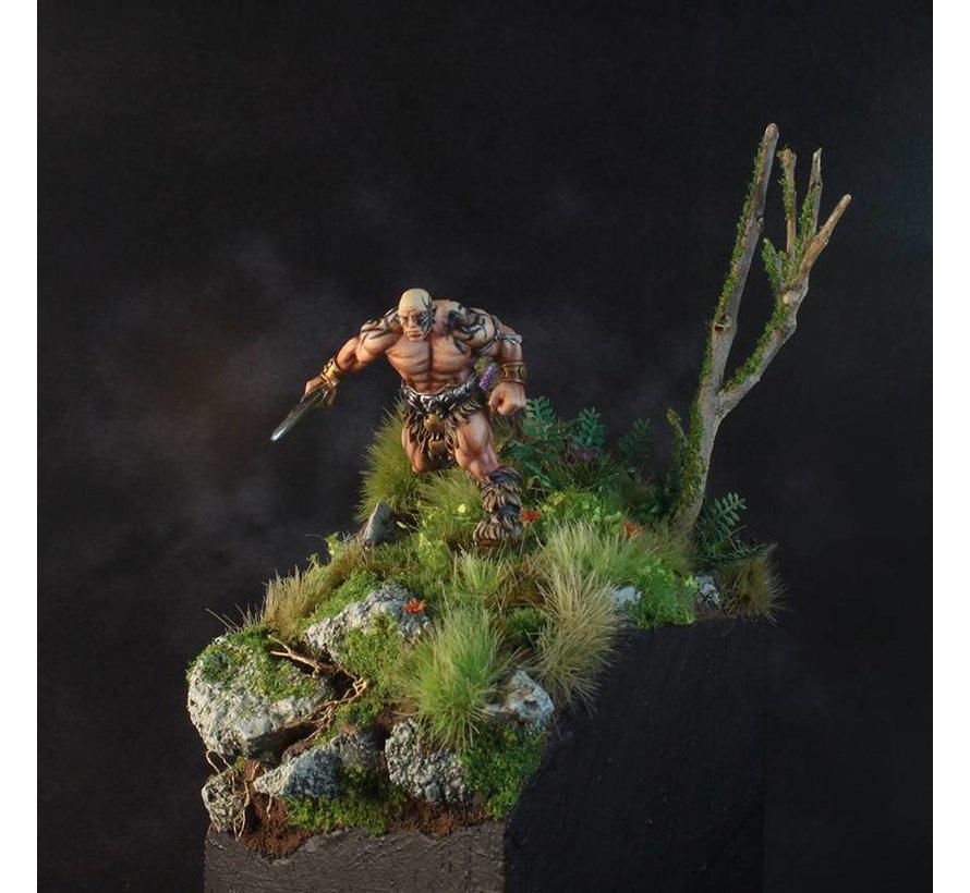 Wilde Tuin - HO 1223