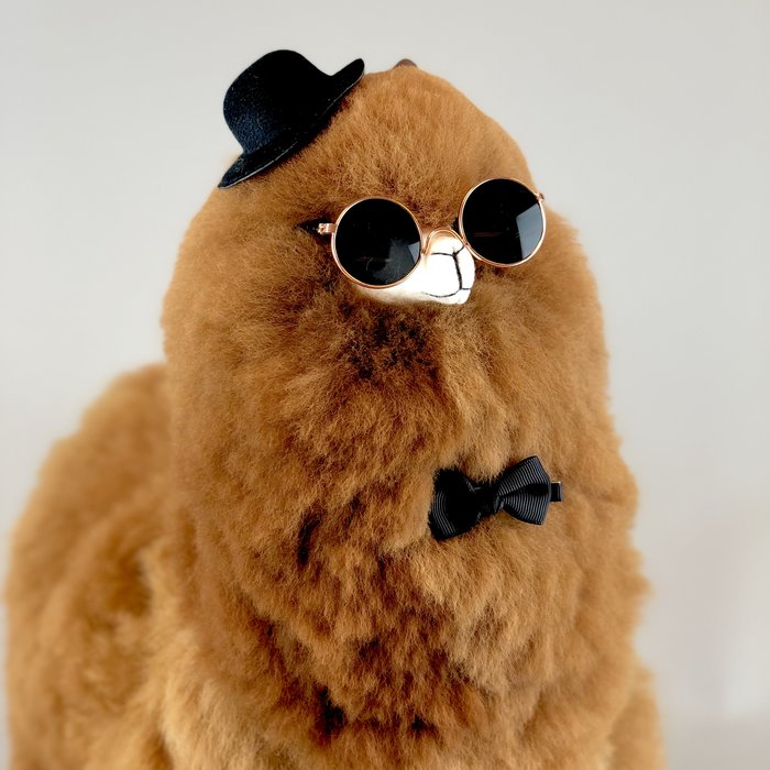 ❤ The coolest sunglasses for your alpaca stuffed animal ❤