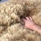 'Reina' - Handgemaakt Alpaca Kleed - Sandstone