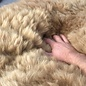 'Reina' - Handmade Alpaca Rug - Sandstone