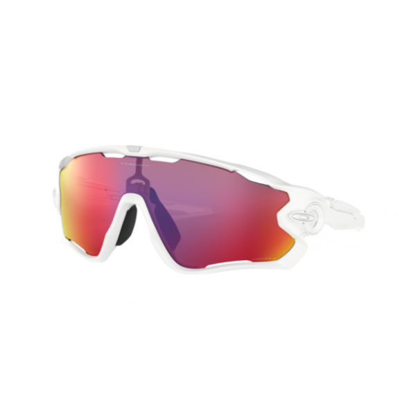Oakley Sunglasses Jaw Breaker Prizm Road