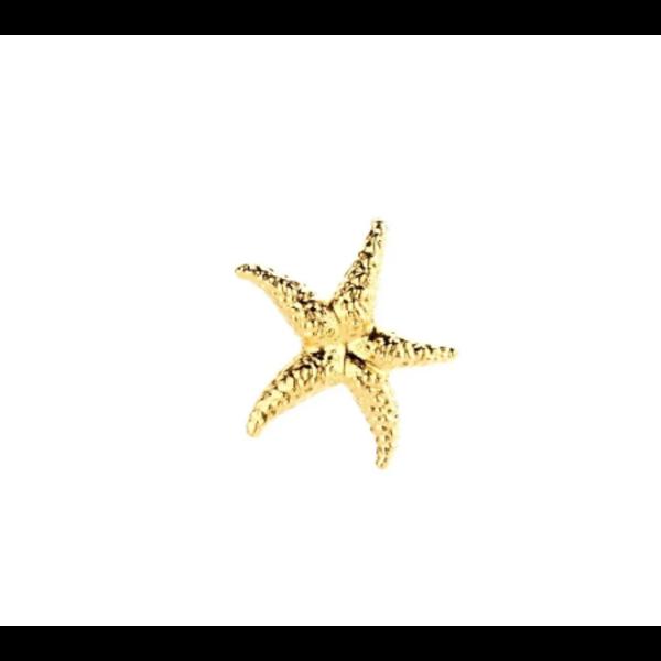 Souvenir de pomme Sea Star Gold