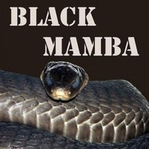 BLACK MAMBA 1ML