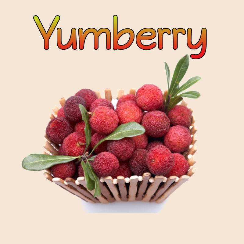 YUMBERRY