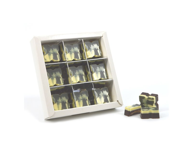 Chocolaterie Vink Bonbons Puur met Foto/Logo 9 stuks