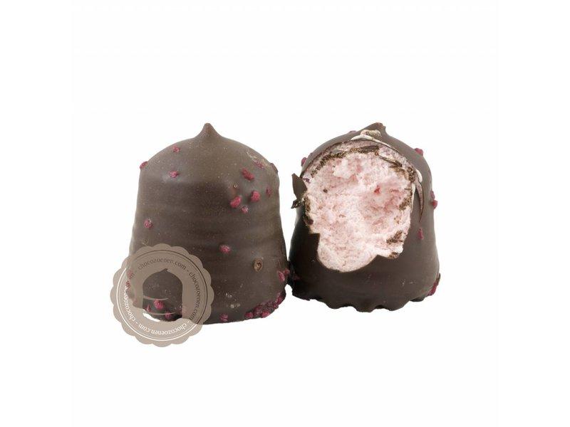 Chocolaterie Vink Chocozoen Puur Aardbeien