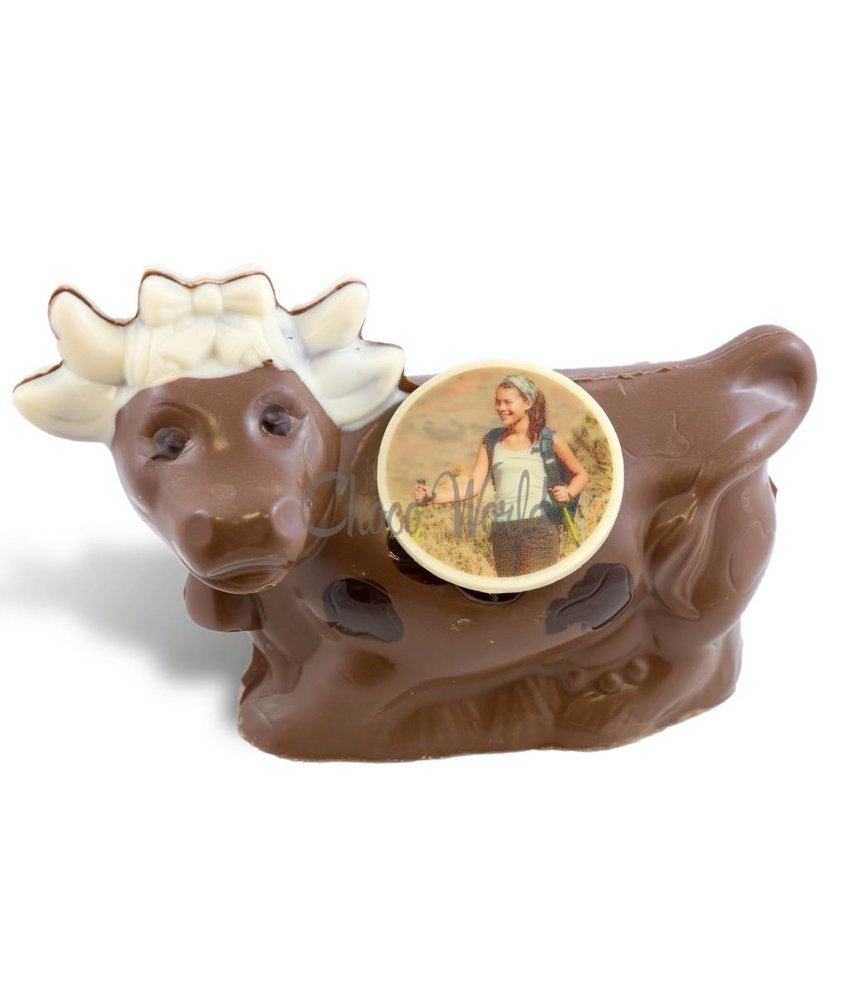 Chocolaterie Vink Koe met foto
