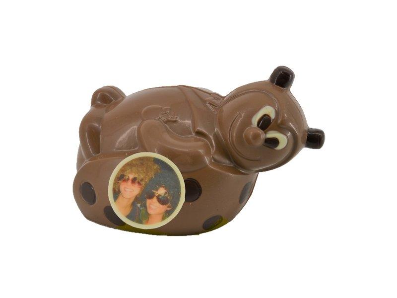 Chocolaterie Vink Chocolade lieveheersbeestje met foto