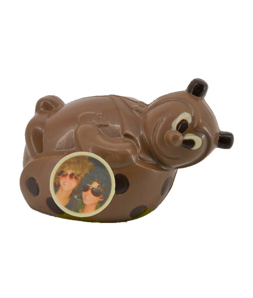 Chocolaterie Vink Lieveheersbeestje met foto